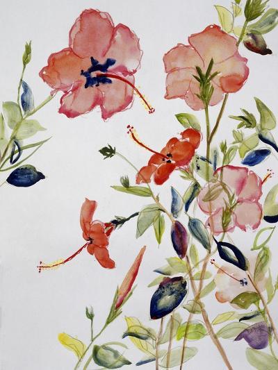 Hibiscus Flowerpiece-Sir Roy Calne-Giclee Print