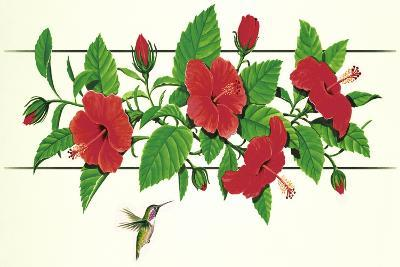 Hibiscus Hummer--Giclee Print