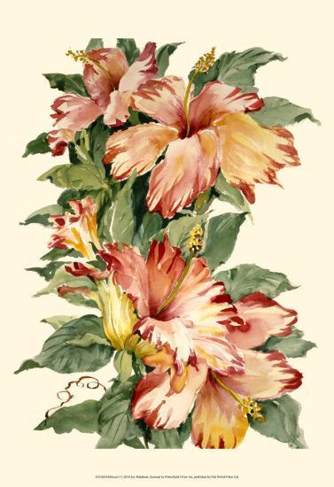 Hibiscus II-Joy Waldman-Art Print