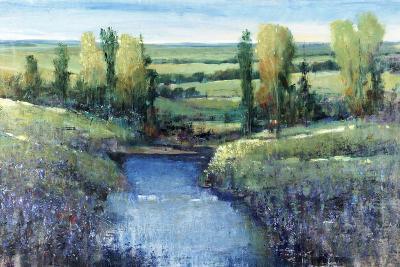 Hidden Pond-Tim O'toole-Giclee Print