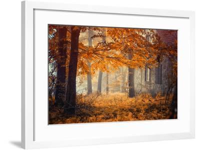 Hideaway-Ildiko Neer-Framed Photographic Print