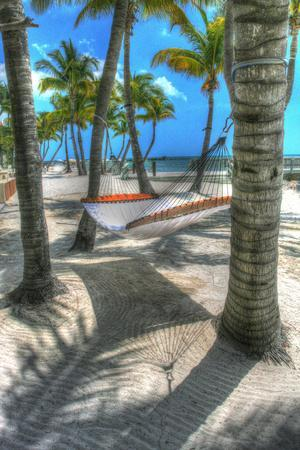 https://imgc.artprintimages.com/img/print/higgs-beach-hammock_u-l-q10pnwj0.jpg?p=0
