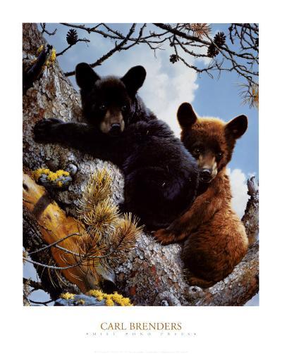High Adventure-Carl Brenders-Art Print