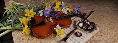 High Angle View of a Violin with Flowers--Photographic Print