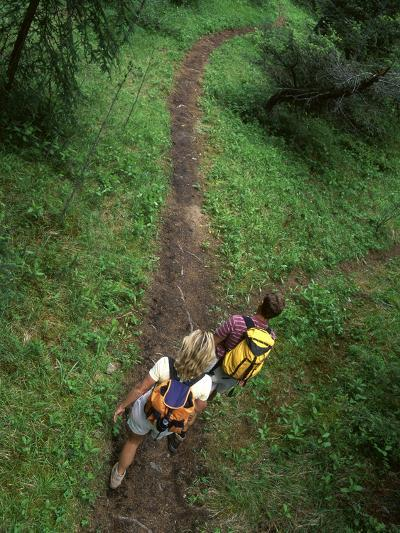 High Angle View of a Young Couple Hiking on a Forest Trail--Photographic Print