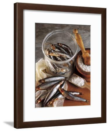High Angle View of Anchovies in a Jar-P. Martini-Framed Photographic Print