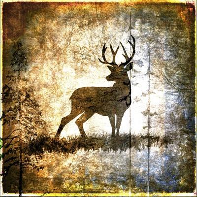 https://imgc.artprintimages.com/img/print/high-country-deer_u-l-pymlw40.jpg?p=0
