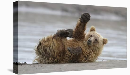 High Five-Alfred Forns-Stretched Canvas Print