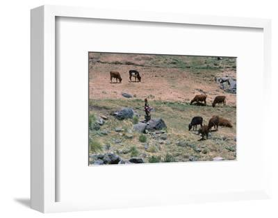 High pasture in the High Atlas Mountains-CM Dixon-Framed Photographic Print