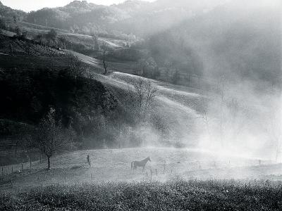 High Pasture-Andrew Geiger-Giclee Print