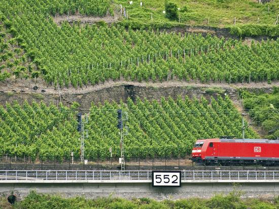 High Speed Train by Rhineland Vineyards, Koblenz, Germany-Miva Stock-Photographic Print