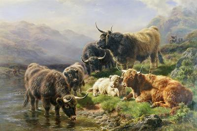 Highland Cattle-William Watson-Giclee Print