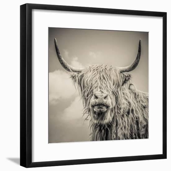 Highland Cattle-Mark Gemmell-Framed Photographic Print