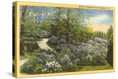 Highland Park, Rochester, New York