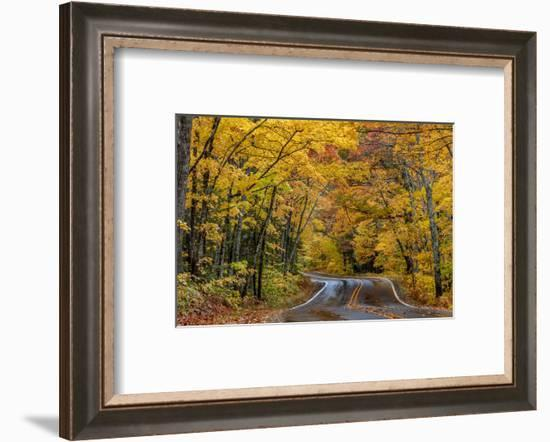 Highway 41 covered roadway in autumn near Copper Harbor in the Upper Peninsula of Michigan, USA-Chuck Haney-Framed Photographic Print