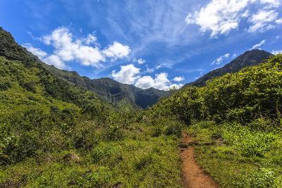 Hiking Trail to Hanakapiíai Falls in Kauai Along the Na Pali Coast-Andrew Shoemaker-Photographic Print