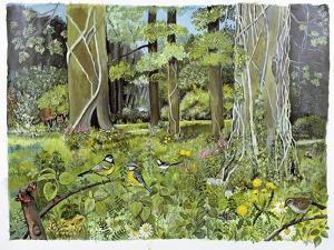 Behind the Squires, Devon by Hilary Jones