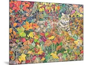 Tabby in Autumn, 1996 by Hilary Jones
