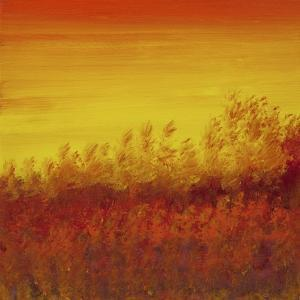 Views of Nature 12 by Hilary Winfield