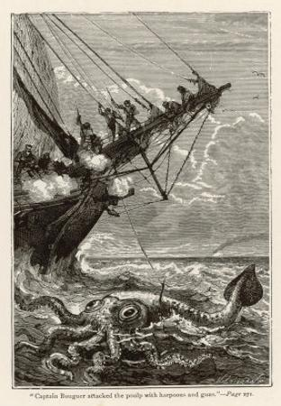 20,000 Leagues Under the Sea: Attacking a Giant Squid