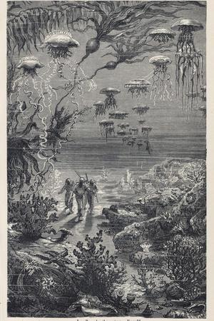 20,000 Leagues Under the Sea: The Divers on the Sea-Bed