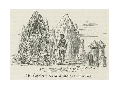 Hills of Termites or White Ants of Africa--Giclee Print