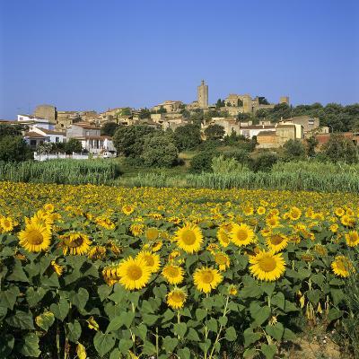 Hilltop Village Above Sunflower Field, Pals, Catalunya (Costa Brava), Spain-Stuart Black-Photographic Print