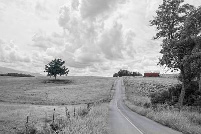 Hilly Road BW-Bob Rouse-Photographic Print