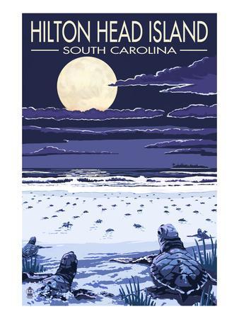 https://imgc.artprintimages.com/img/print/hilton-head-south-carolina-baby-turtles-hatching_u-l-q1gpei60.jpg?p=0