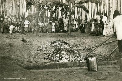 https://imgc.artprintimages.com/img/print/hindu-firewalking-coals_u-l-pod42j0.jpg?p=0