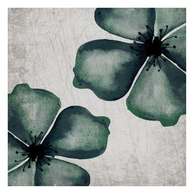 https://imgc.artprintimages.com/img/print/hints-of-emerald-2_u-l-f9a6bc0.jpg?p=0