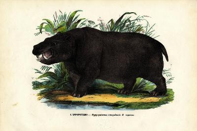Hippo, 1863-79-Raimundo Petraroja-Giclee Print