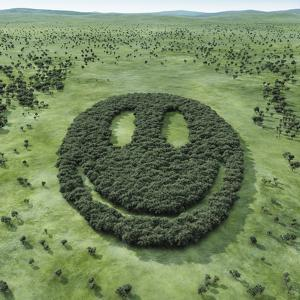 Forest Shaped Smiley by Hiroshi Watanabe