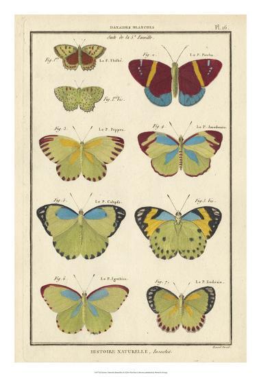 Histoire Naturelle Butterflies II-Unknown-Giclee Print