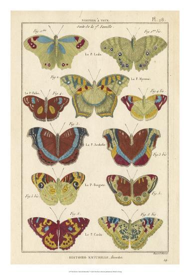Histoire Naturelle Butterflies V-Unknown-Giclee Print