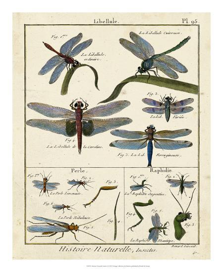 Histoire Naturelle Insects I-Diderot-Giclee Print