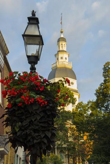 Historic Maryland State House in Annapolis, Maryland-Jerry Ginsberg-Photographic Print