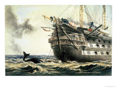 """Hms Agamemnon Laying the Original Atlantic Cable, from """"The Atlantic Telegraph""""-Robert Dudley-Giclee Print"""