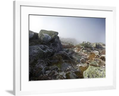 Hoar Frost Dusts Rocks on Whiteface Mountain-Michael Melford-Framed Photographic Print