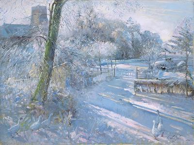 Hoar Frost Morning, 1996-Timothy Easton-Giclee Print