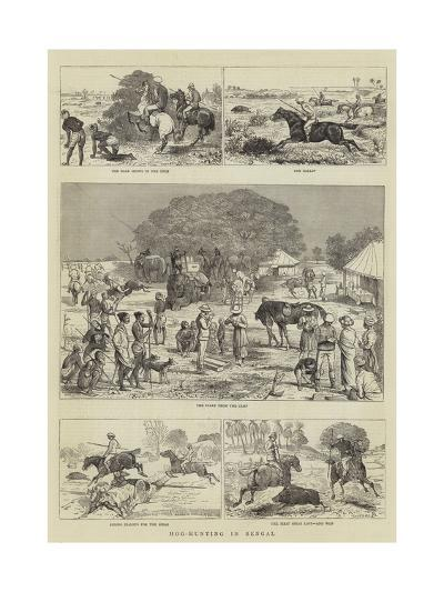 Hog-Hunting in Bengal-Alfred Chantrey Corbould-Giclee Print