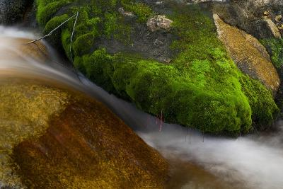 Hogback Creek, Mt Whitney, California-Steve Gadomski-Photographic Print