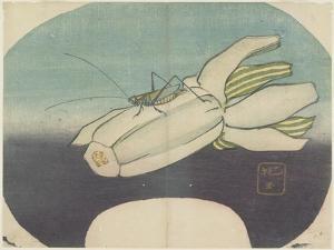 Cricket on a Squash, C. 1830 by Hogyoku