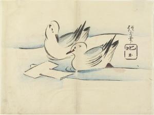 Ducks, C. 1830 by Hogyoku