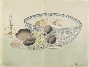 Fish in Bowl of Water, Flowering Branch with Fruit, 1830s by Hogyoku