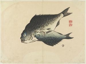 Pair of Fish, C. 1830 by Hogyoku