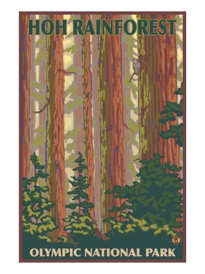 Hoh Rainforest - Olympic National Park-Lantern Press-Art Print