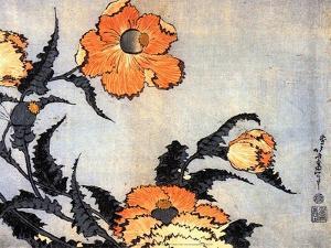 Poppies, late 1820's by Hokusai Hokusai