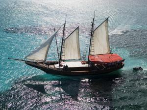 Aerial of Jolly Pirate Tourist Sail Boat Near Palm Beach by Holger Leue