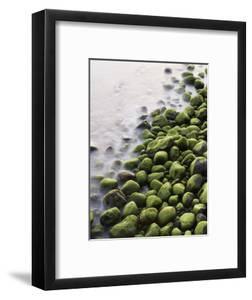 Algae-Covered Boulders on Beach by Holger Leue